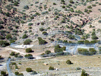 The Sevilleta Wolf Management Facility in New Mexico.